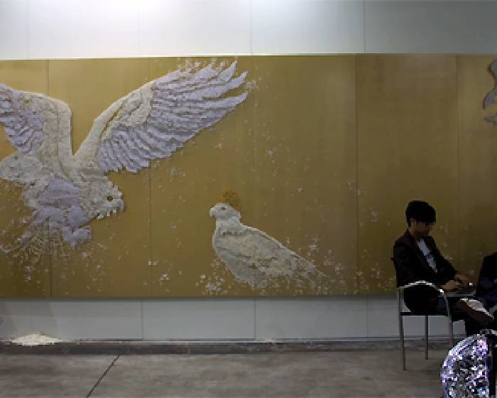 HK10【中國 歐美 日韓參展畫廊專輯】影片