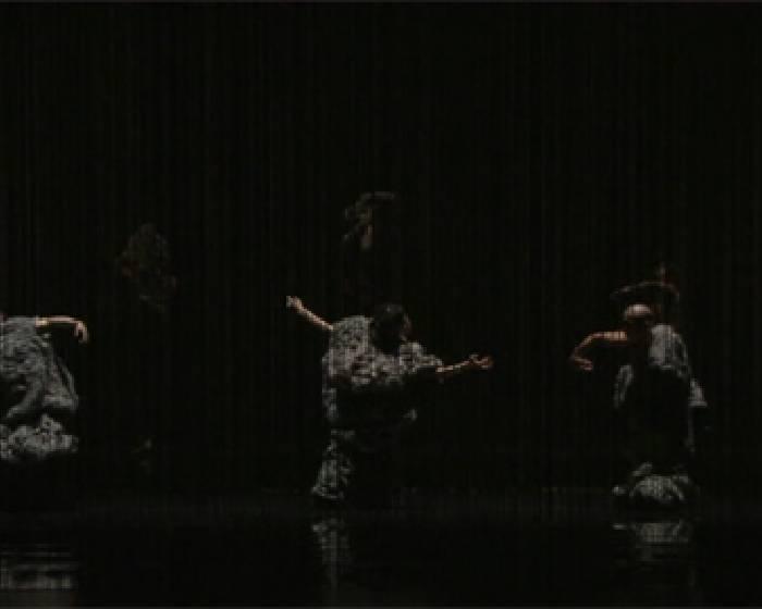 有機體:編織入舞 跳出鬆緊拉扯【台新藝術獎系列報導】