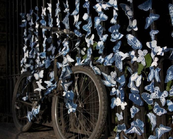 讓4萬隻蝴蝶藝術品 環遊世界