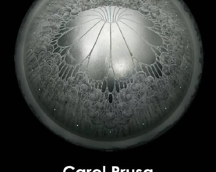 Bluerider ART  【Silver Universe 銀針星際】Carol Prusa