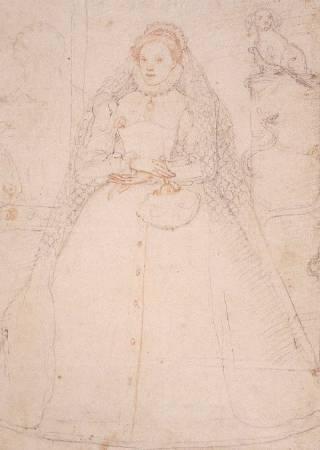 朱卡洛繪製,女王伊莉莎白一世草稿。圖/取自All Things Robert Dudley。