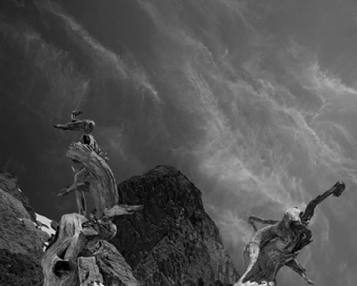 絕版影像館【2011台北國際藝術博覽會】
