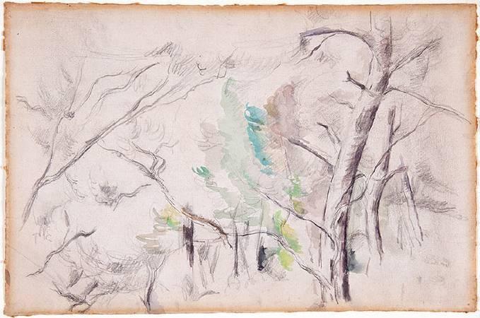 塞尚水彩畫《樹》。圖/取自Barnes Foundation。