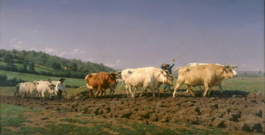 Rosa Bonheur,《Ploughing in Nevernais》。圖/取自維基百科