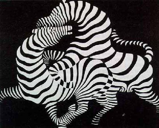Victor Vasarely,《Zebra》,1937。圖/取自wikiart。