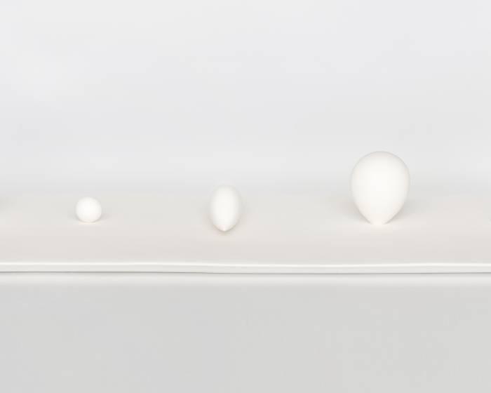 WINWIN ART 未藝術【光與闇的交界】黃莛㭹、蔡玉庭雙個展