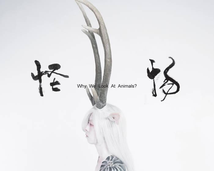 金車藝術空間【流變為動物II-怪物】黃贊倫藝術創作個展