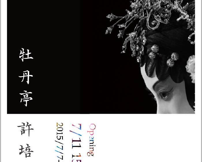 觀想藝術【牡丹亭】許培鴻攝影展