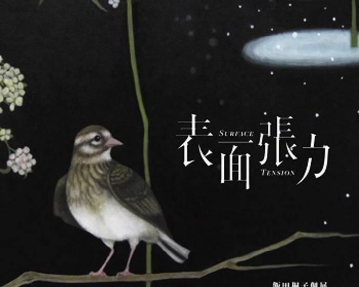 索卡藝術【表面張力】飯田桐子個展