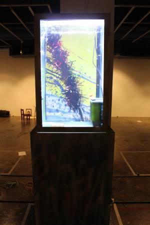 黃彥超設計的水族箱。圖/非池中藝術網攝。