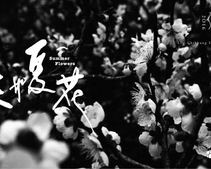 台北國際藝術村【生如夏花】劉致宏個展