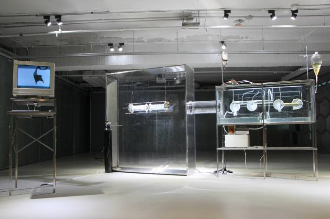 張碩尹與鄭先喻《棲息地 Second Life》。圖/非池中藝術網攝。