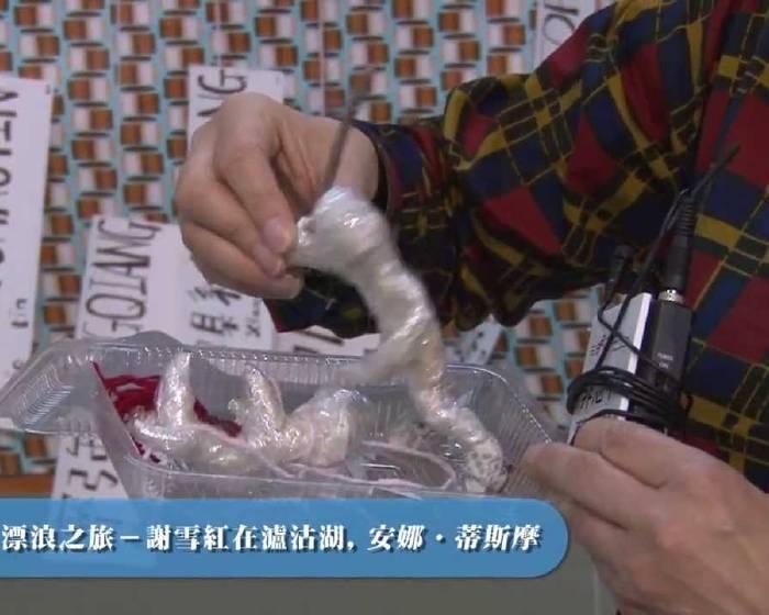 藝文直擊─ 【2013 第十五屆臺北藝術節】開幕記者會