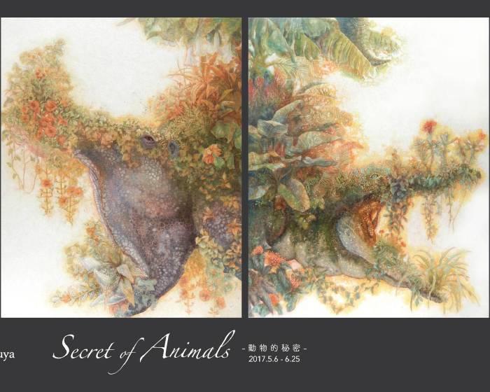 大雋藝術 Rich Art【 Secret of Animals -動物的秘密-】白田 誉主也