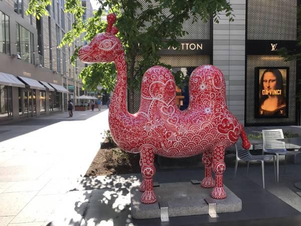 華盛頓DC城市中心 洪易 雙峰駱駝