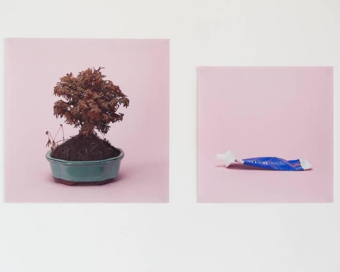 想貳藝文空間【激情的方式 The Method of Passion】尹子潔 個展 Yin, Zi Jie Solo Exhibition