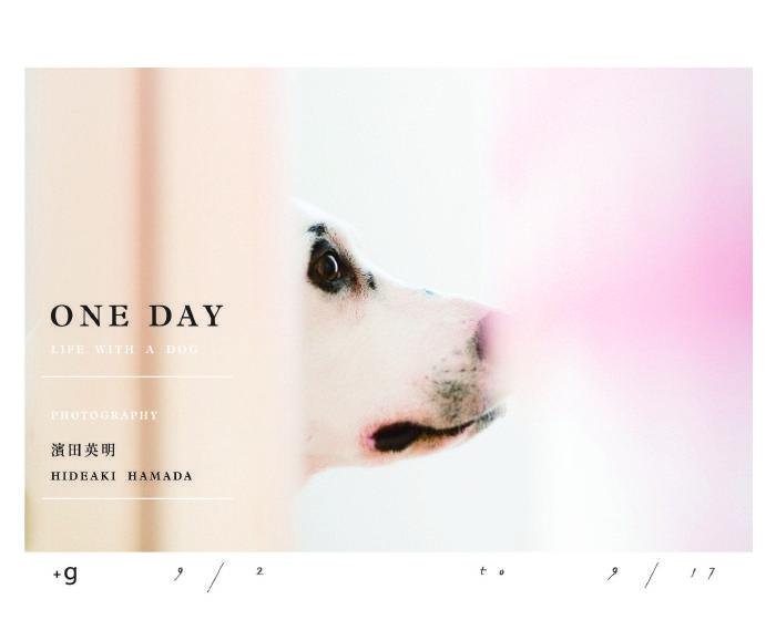 小器藝廊【ONE DAY LIFE WITH A DOG】濱田英明 台灣首展