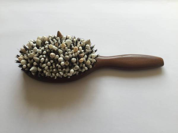 阪田清子 Sakata Kiyoko_ 髮刷 No.10 Hair brush No.10_ 2014_ Shellfishes_Hair brush_ 24 × 9×5 cm