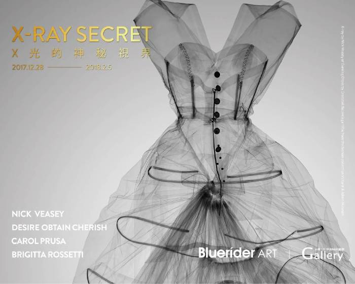 中友時尚藝廊【X-Ray Secret X 光的神秘視界】By Bluerider ART