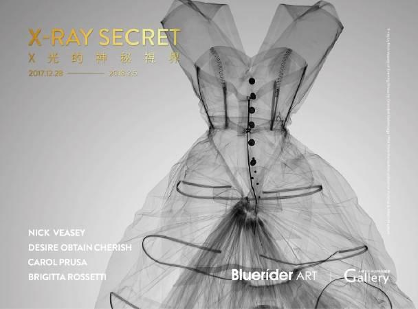X-Ray Secret X光的神秘視界