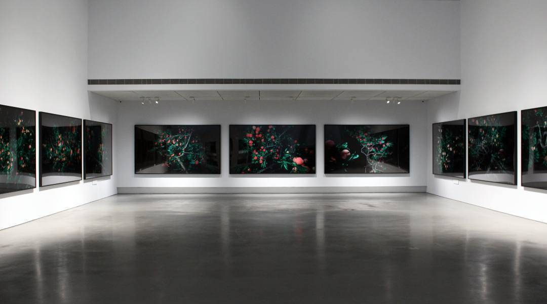 柳美和,《曉I ,II&III》,2017;《川中鳥I ,II&III》,2016;《円香I ,II&III》,2017。圖/非池中藝術網攝。