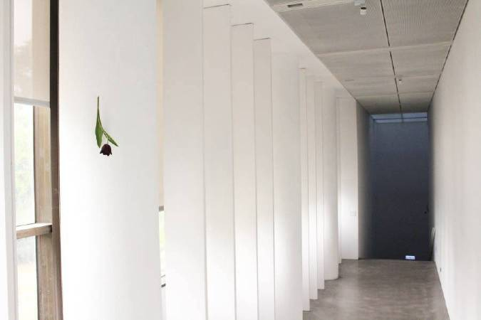 須田悅弘,《鬱金香》,2018。圖/非池中藝術網攝。