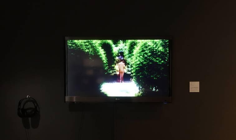 黃盟欽,《慾花園》,錄像裝置、依展覽空間而定。圖/非池中藝術網攝。