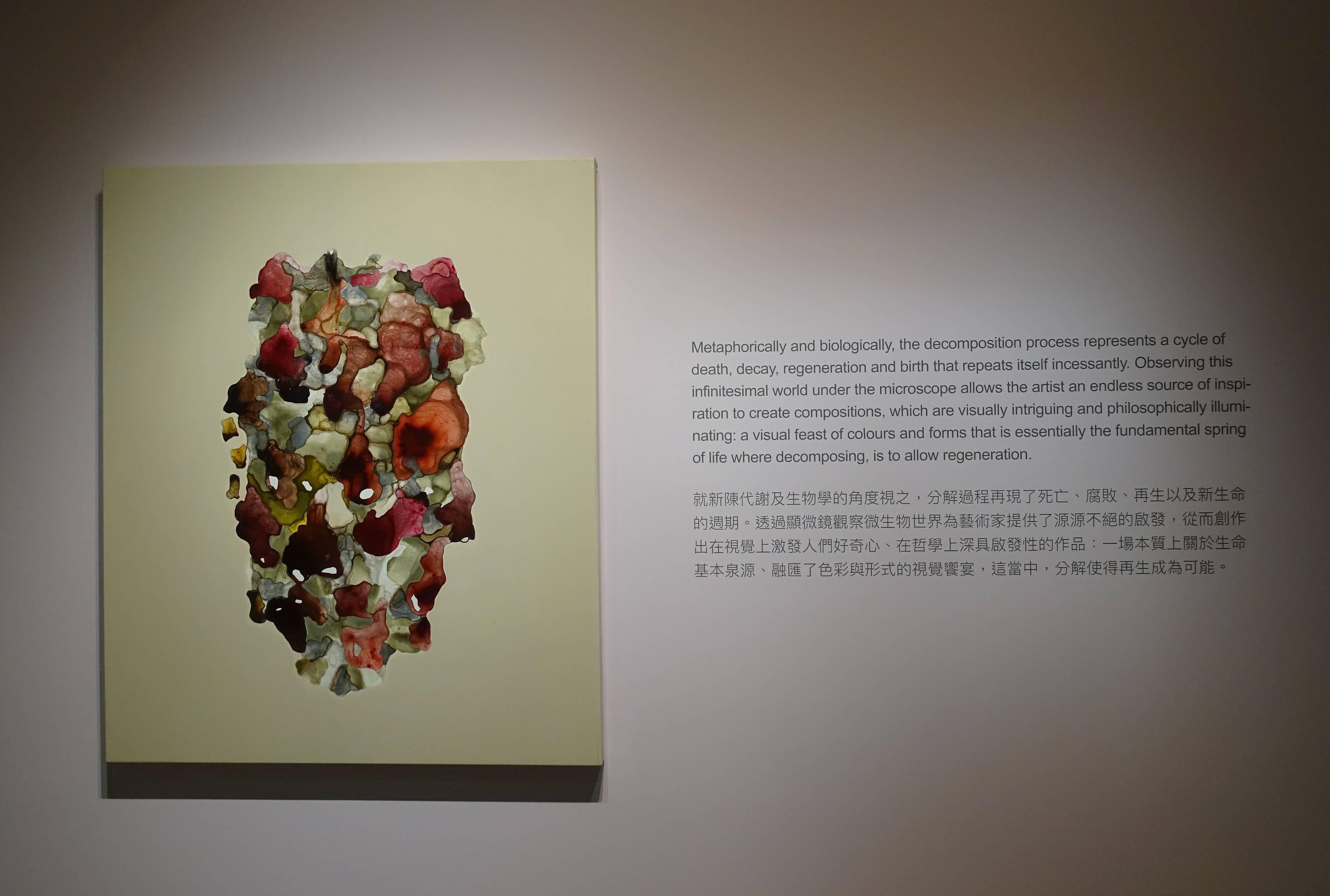 薩伊夫.加里波第,《可信的微生物#3》,壓克力木板,2018。圖/譚竣鴻攝。