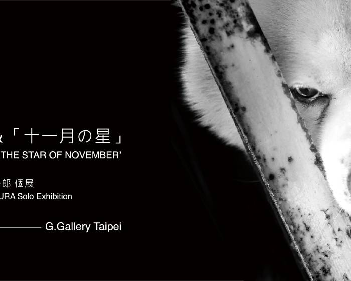 居藝廊 G.Gallery【犬の戦士団&十一月の星】內倉真一郎 Shinichiro Uchikura 個展