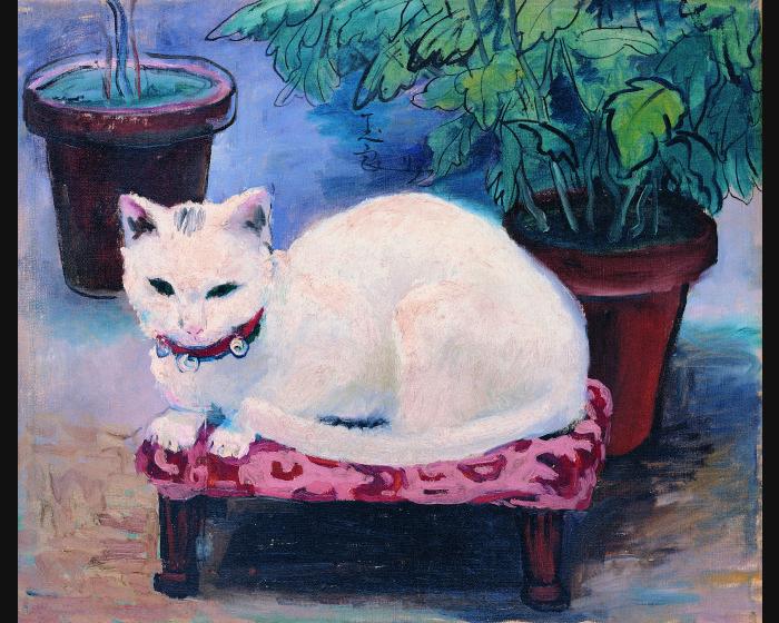 潘玉良-白貓