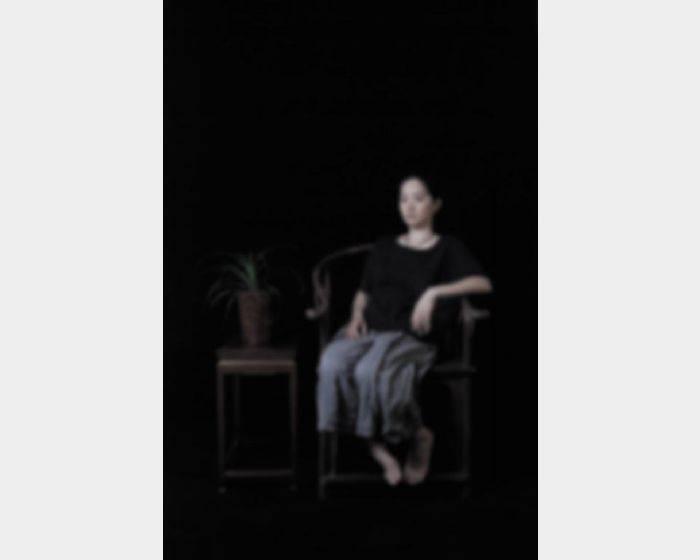 袁廣鳴-逝去中的肖像