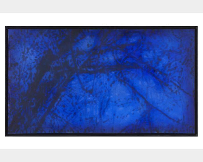 謝帆 -樹.藍 Tree.Blue