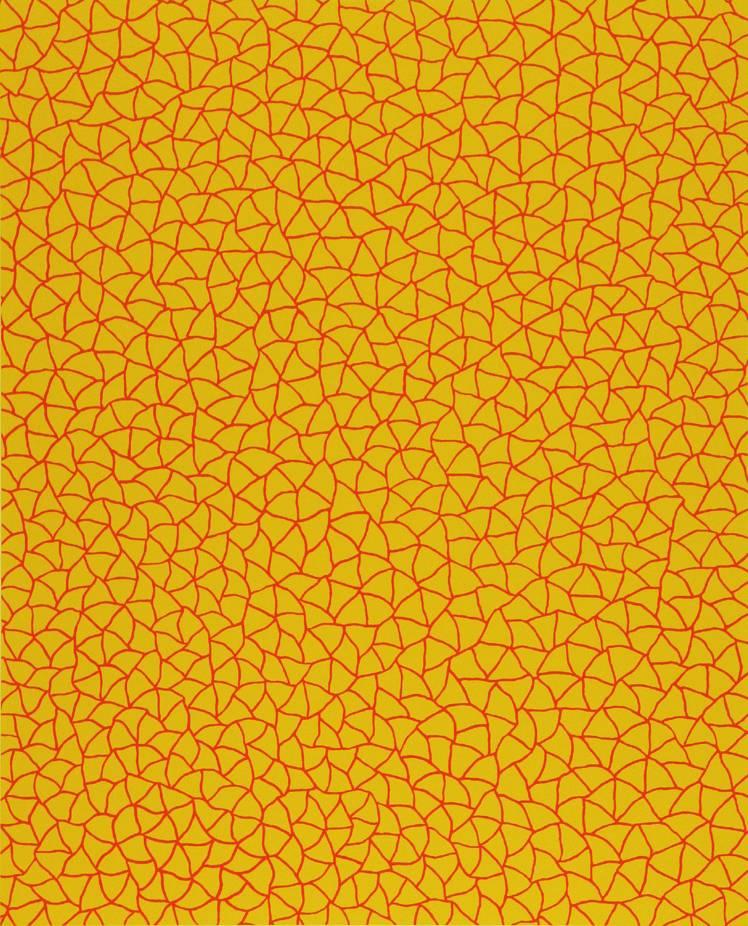 草间弥生-no.322 无限的网 (yor) infinity nets (yor)图片
