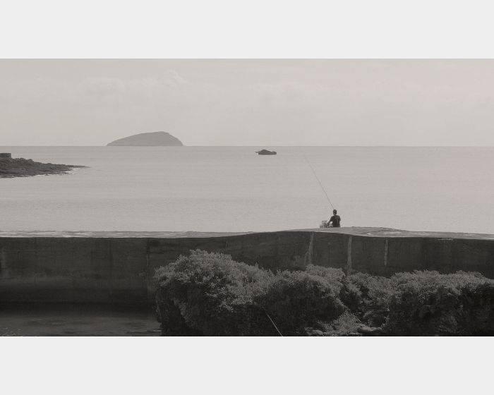 林冠名-島B