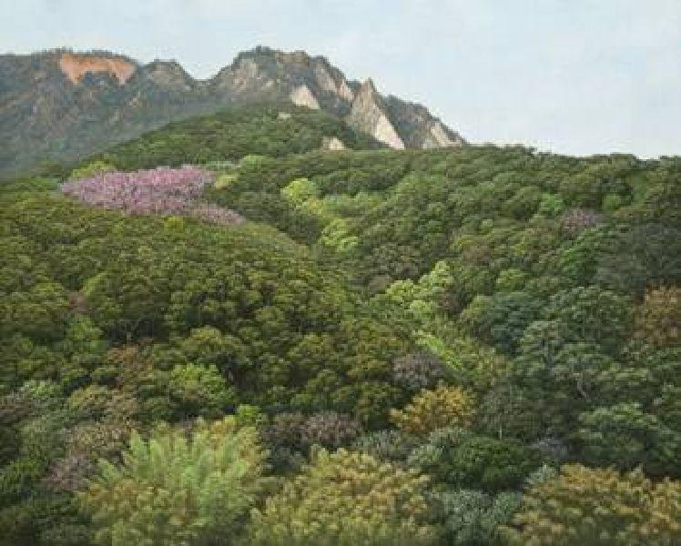 張泉豐-春天的火焰山