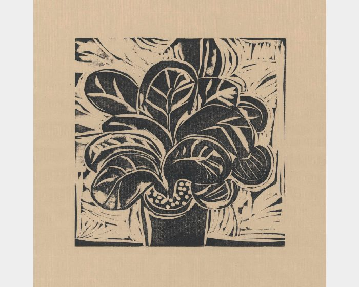徐睿志-小植物 2  Small Plant 2