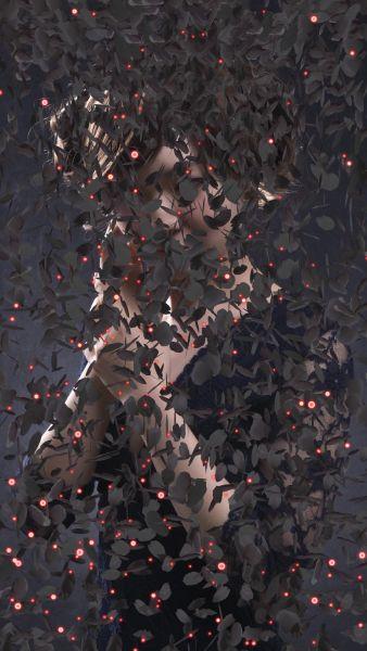 張暉明-Black Cherry Blossom