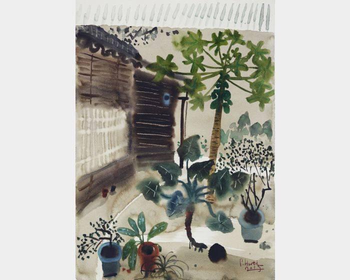 老院-木瓜樹I