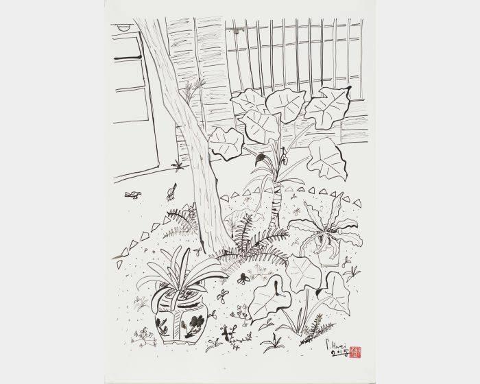 老院子素描II-花圃
