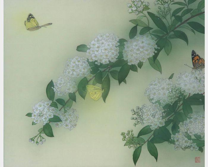 田中裕子-薰蝶戀花