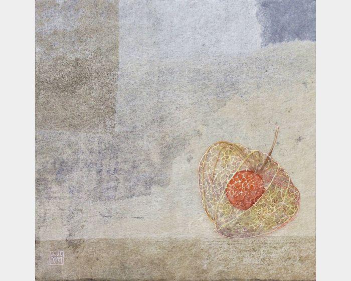田中裕子-酸漿果