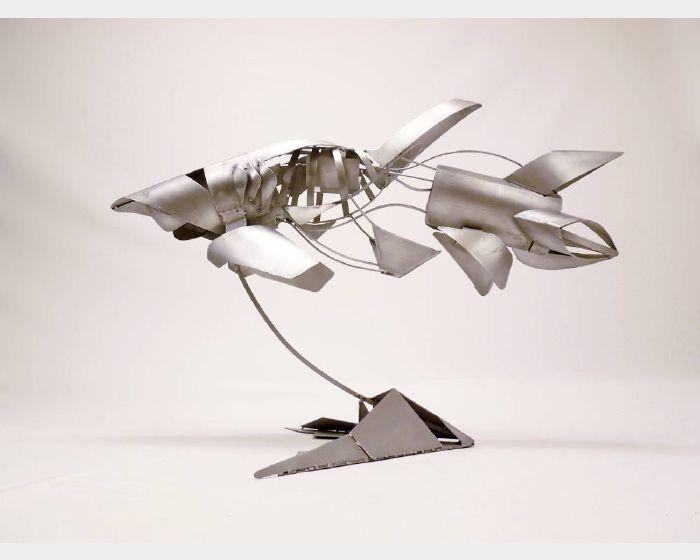 韓愛國-鯊魚
