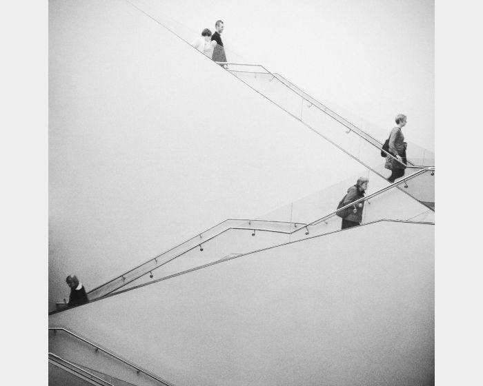 楊孟倫-人生階梯