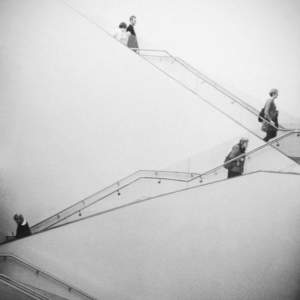 杨孟伦-人生阶梯