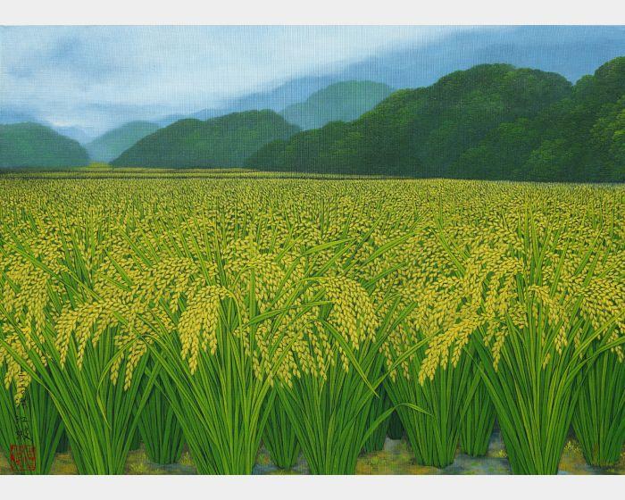 金秋山谷 Golden Valley