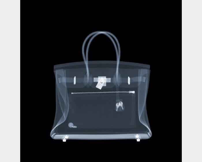 尼克‧維西-Hermes Birkin Bag Two Cents