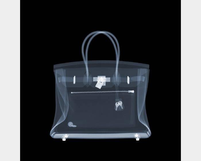 尼克‧維西-Hermes Birkin Bag Two Cents