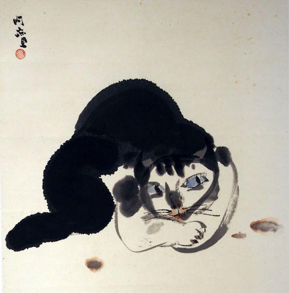 陳朝寶-貓