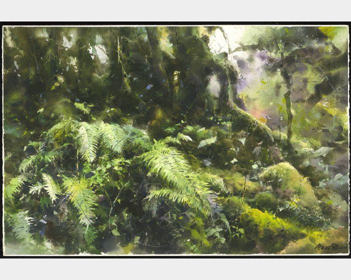 謝明錩-森林的呼吸