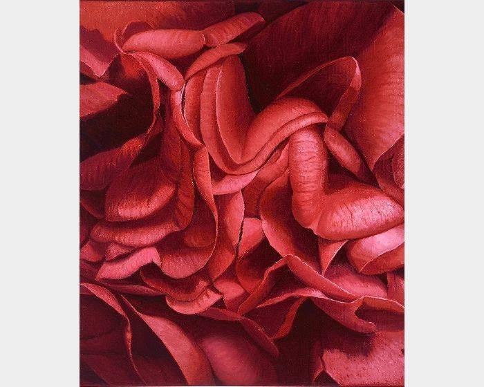 林美蕙-紅花序曲2